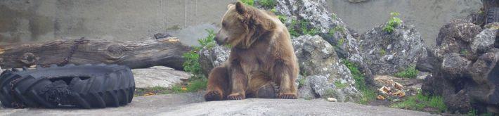 Výlet - zoo bojnice - 22.05.2013 - Img 0038